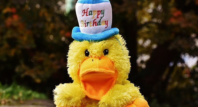birthday-duck