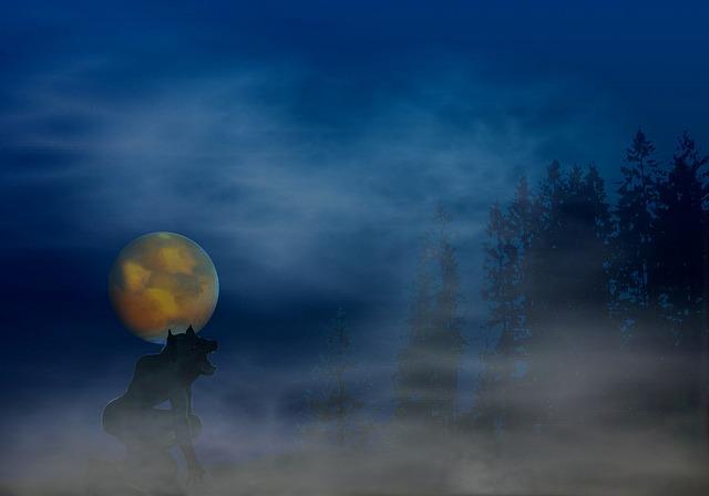 werewolf-620743_640