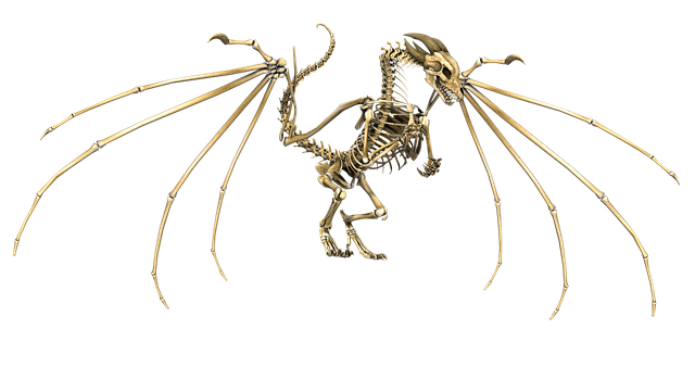 dragon-1957809_640