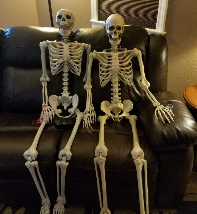 couch skeletons