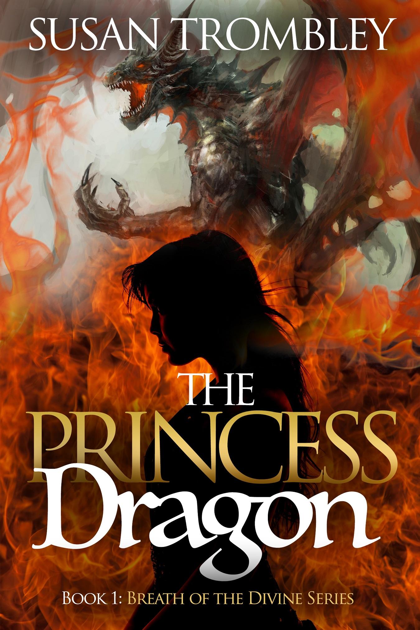 The Princess Dragon Cover resize