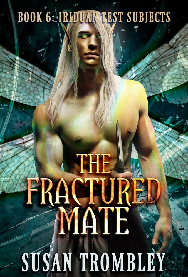 TheFracturedMate_ebook_resized